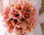 Виды свадебного букета невесты